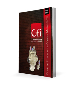 GFI_GuideICV_2016_3D